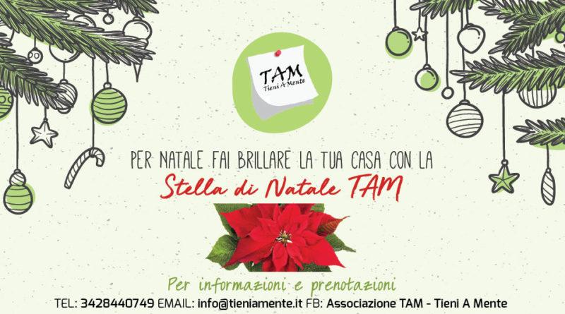 Campagna Natalizia TAM: Sostieni le nostre attività di supporto psicologico