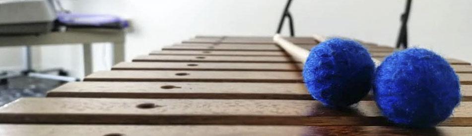 musicoterapia autismo napoli xilofono strumentario orff