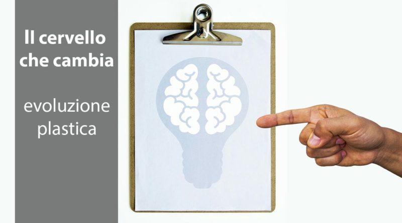 come funziona la neuroplasticità del sistema nervoso